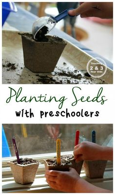 Teach your kids how to plant seeds indoors using cups, and then transferring them outdoors! A great lesson in taking care of living things.