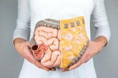 Die 5 besten Tipps für einen gesunden und fitten Darm - Dünn- und Dickdarm sind zusammen gut acht Meter lang. In diesem System arbeiten fast 2 Kilo Bakterien, um Nahrung zu verwerten. Grund genug, den Darm zu pflegen.
