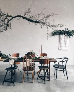 deko-ideen Stylish boho table decoration with a large hanging branch above the dining table Seating Bentwood Chairs, Dining Chairs, Dining Table, Wooden Chairs, Wooden Desk, Painted Chairs, Desk Chairs, Dining Area, Flower Installation