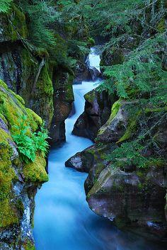 Avalanche Gorge (Trail of the Cedars) - Glacier Park, Montana