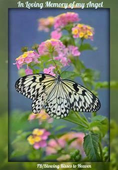 butterfly heaven wallpaper - photo #32