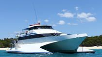 Whitsunday Three Island Cruise from Airlie Beach: Whitsunday Island, Black Island and Daydream...
