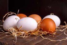 Estä kananmunien halkeileminen – kokeile uskomattoman helppoa keittoniksiä  http://www.msn.com/fi-fi/ruoka-ja-juoma/ruokauutiset/est%C3%A4-kananmunien-halkeileminen-%E2%80%93-kokeile-uskomattoman-helppoa-keittoniksi%C3%A4/ar-BBomi3D?li=AA51XH