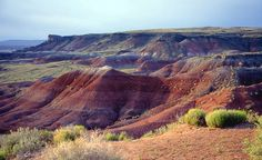 Painted Desert, Arizona....desert of badlands in Four Corners area...abundant iron and manganese give it rich color.