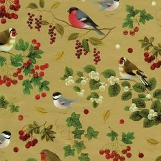 bird crafts idea: Entertaining with Caspari Continuous Gift Wrapping Paper, Winter Birds Gold, ** More info could be found at the image url. (This is an affiliate link) Vintage Christmas Wrapping Paper, Christmas Gift Wrapping, Gift Wrapping Paper, Wrapping Ideas, Bird Nest Craft, Bird Crafts, Gold Christmas, Christmas Gifts, Christmas Decorations