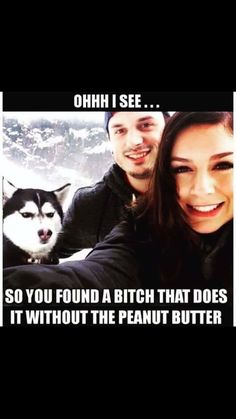 Funny Animals With Captions, Funny Animal Memes, Funny Animal Pictures, Funny Dogs, Funny Memes, Jokes, Alpha Male, Twisted Humor, Adult Humor