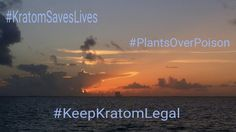 Please help keep kratom legal, sign this petition. #KratomSavesLives #KeepKratomLegal https://petitions.whitehouse.gov/petition/please-do-not-make-kratom-schedule-i-substance