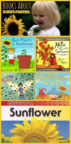 """A selection of books about sunflowers - and some activities for toddlers to grow their own. This is a lovely post, with opportunities for lots of maths  and label chat- how big, how long,how high, what colour. See also Eric Carles book """"the Tiny Seed"""", although this does have a lot of text. You could just talk through the pictures if the text is too long."""