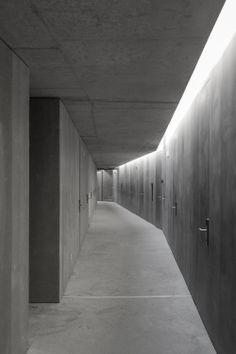 a f a s i a: Alvaro Andradre
