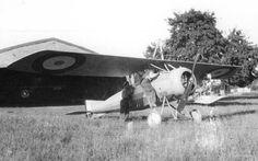 French Armée de l'Air Morane Parasol, Villeselve, 1917.