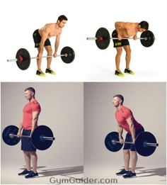 Jim stoppanis 12 week shortcut to size pinterest gain muscle jim stoppanis 12 week shortcut to size pinterest gain muscle gain and muscles malvernweather Image collections