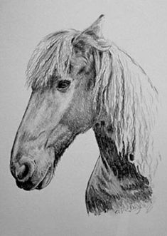 Hier können Sie ein Portrait nach Foto zeichnen oder malen lassen, schnell, künstlerisch hochwertig und mit Zufriedenheitsgarantie