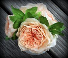 austin roses - austinovy (anglické) růže