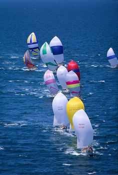 Colorful sails, the wind filling up the spinnakers, fast, faster fastest. . .