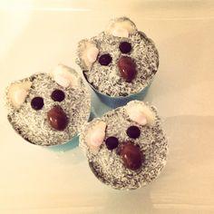 Koala lamington cupcakes for Australia Day