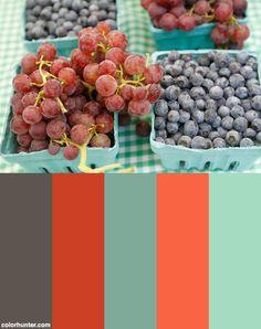 Farmers Market 18 Color Scheme