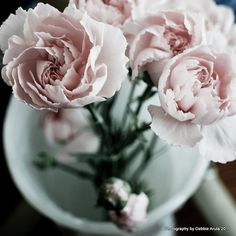 For the Peony in you...