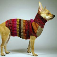 SOLEIL  luxury brand la bamba dog sweater