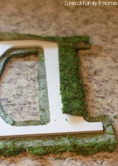 Love Of Family & Home: DIY Moss Covered Monogram Tutorial....