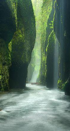 Oneonta Gorge, Oregon :: by Photographer Marc Adamus