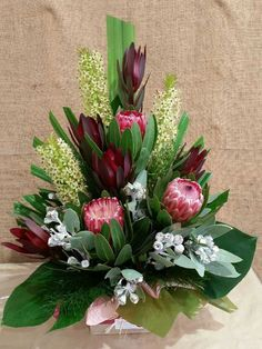 Native Arrangement - pink proteas, pineapple lily flowers, red leucadendrons and silver tetragona nuts. Gymea lily leaf cut at an angle at the back. Tropical Flower Arrangements, Creative Flower Arrangements, Funeral Flower Arrangements, Beautiful Flower Arrangements, Unique Flowers, Exotic Flowers, Beautiful Flowers, Purple Flowers, Big Flowers