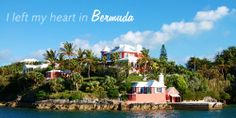 Island Insight from #Bermuda | Did you?