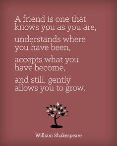 Friendship Quote #7 #quote #quotes #quoteoftheday #inspiration #inspiring #inspirational #words #wisdom #wordsofwisdom #motivation #motivating #motivational #friendship #friends #love  (http://trinadlambert.com)