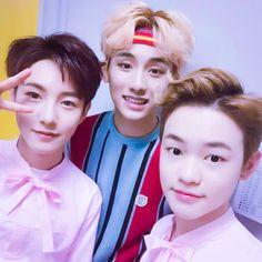 renjun, winwin & chenle