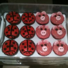 RSPCA cupcake day