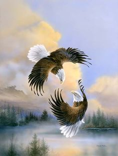 """Waltz on Wings"" Bald Ealge....................BEAUTIFUL PAINTING......LOVE IT"