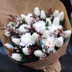 Blanc, tulipe œillet wax
