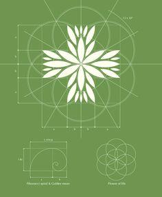 Czech Medical Herbs logo design — Designspiration