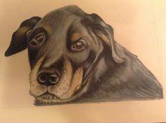 Dog My Arts, Dogs, Animals, Animales, Animaux, Pet Dogs, Doggies, Animal, Dog