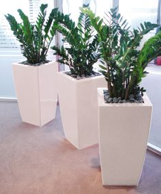 House Plants Decor, Patio Plants, Plant Decor, Indoor Plant Pots, Indoor Planters, Home Landscaping, Front Yard Landscaping, Log Home Interiors, Plant Box