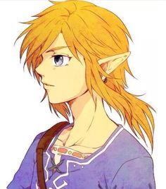 Wii U Link - is this a mullet?
