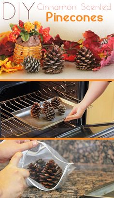 Cinnamon scented pinecones are the definition of fall decor! It's so easy to make it yourself and it makes your entire home smell amazing...x