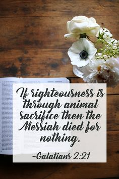 Galatians - The Messiah died for nothing if the Levitical system could make us righteous. It's time for a better understanding of Galatians Bible Verses About Faith, Scriptures, Melchizedek Priesthood, Bible Study Notebook, Sabbath Day, Love Your Neighbour, Scripture Art, Righteousness, Torah