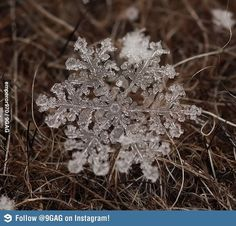 Zoomed-in Snowflake