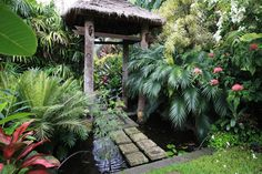 Garden Tropical Design Jungles 33 Ideas For 2019 Patio Tropical, Tropical Garden Design, Tropical Landscaping, Garden Landscape Design, Tropical Plants, Backyard Landscaping, Tropical Gardens, Bali Garden, Balinese Garden