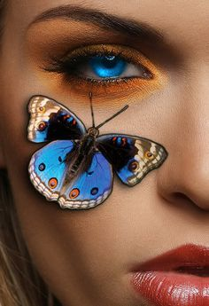 blue eyes and beautiful butterfly