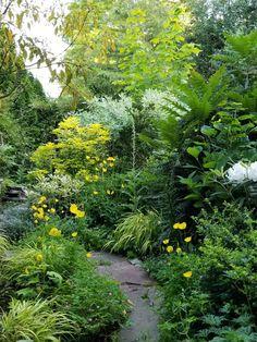 A Quiet Week in the Pre-Blooming Garden - FineGardening Gorgeous path design. This lush scene is a c Forest Garden, Woodland Garden, Garden Paths, Path Design, Landscape Design, Japanese Garden Design, Garden Signs, Front Yard Landscaping, Landscaping Ideas