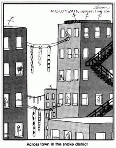 Gary Larson - the Far Side