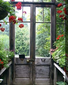 Love Garden, What Is Tumblr, Trending Topics, Old Things, Explore, Beautiful, Glass Houses, Bliss, Conversation