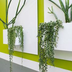 Potted | Indoor Style For Outdoor Living | City Planter - White