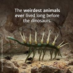 Earth Life's Awkward Phase - The Cambrian Explosion