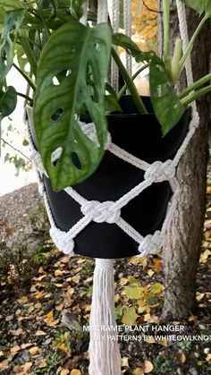 Crochet Plant Hanger, Macrame Plant Hanger Patterns, Free Macrame Patterns, Macrame Wall Hanging Patterns, Macrame Art, Macrame Design, Macrame Projects, Diy Christmas Ornaments, Crafts