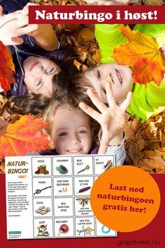 Gratis naturbingo i høst! Naturen er på sitt aller vakreste om høsten med alle høstfargene! I naturbingoen vår med høsttema skal man blant annet finne noe som er rødt og gult! Bruk rabattkoden: HØSTGØY så får du laste ned naturbingoen helt gratis. Fyll inn koden i feltet for rabattkode i kassen. Advertising Strategies, Marketing And Advertising, Craft Activities For Kids, Crafts For Kids, Bingo, Autumn Crafts, Too Cool For School, Teaching Kids, Grape Vines