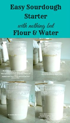 How To Make A Sourdough Bread Starter with Just Flour and Water - this is a GREAT post with good info!