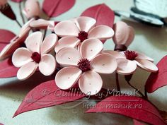 Quilled Cherry Plum Blossom in a Shadobox Frame - Quilling by ManuK