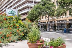 This boutique hotel is only one block from the San Antonio River Walk. The hotel offers free internet access and a daily continental breakfast. San Antonio Hotels, San Antonio River, River Walk, Hotel Offers, Continental Breakfast, Coffee Maker, Street View, Guest Room, Cable